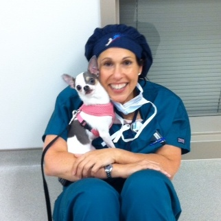 Dr. Lysa Posner with a chihuahua