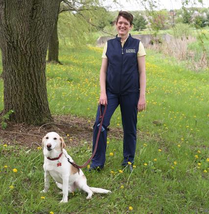 Heidi Barnes Heller, DVM, Dipl. ACVIM